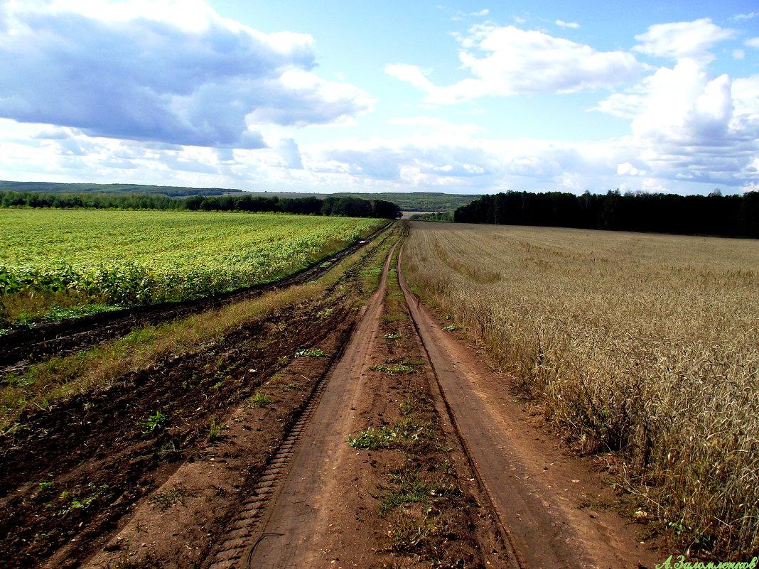 Дорога в осень - Андрей Заломленков