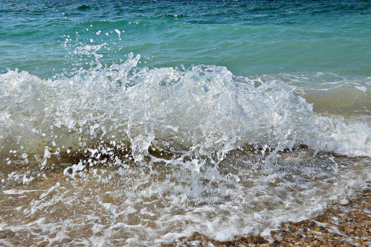 Море в сентябре - Елизавета Царук