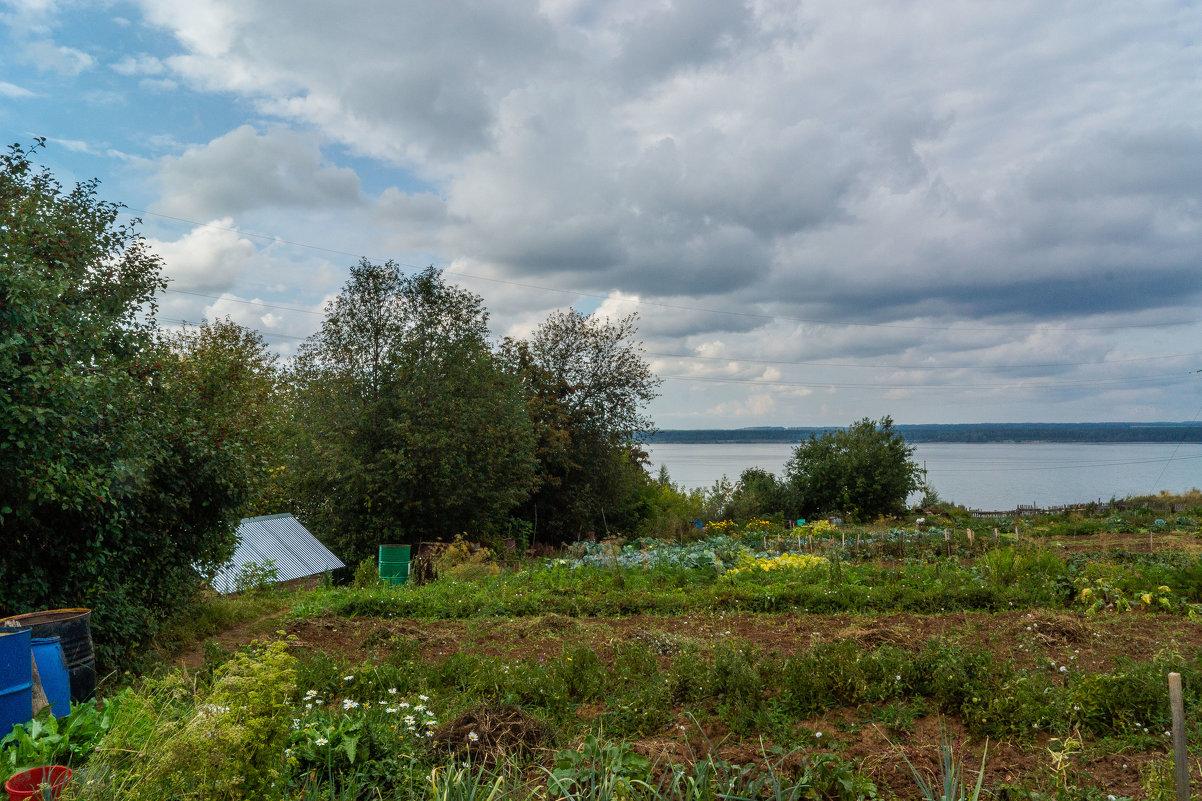 В огороде - Валерий Симонов