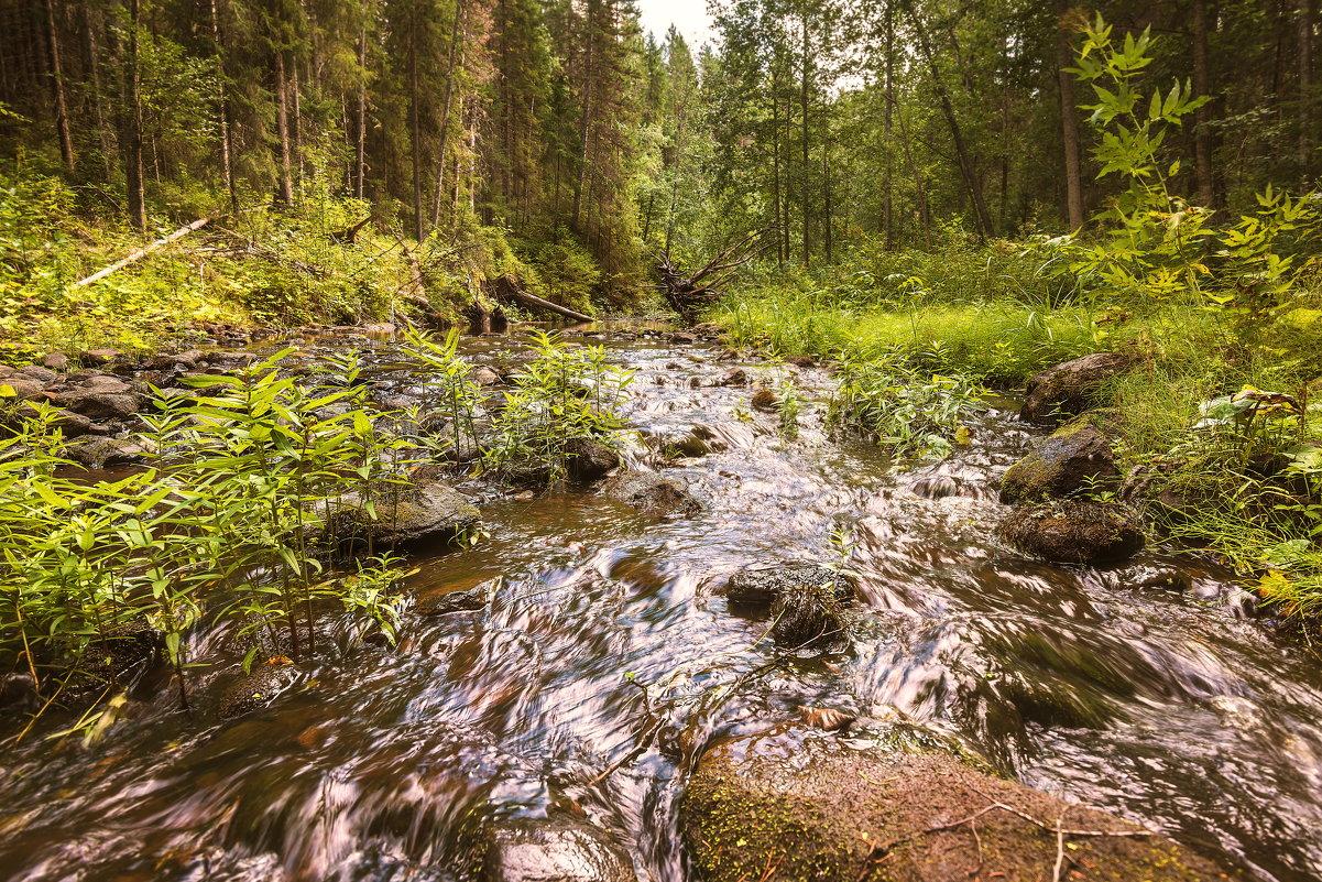 Северные реки - Артем