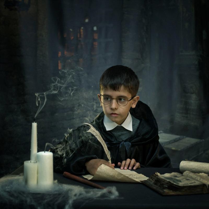Гарри Поттер - Римма Алеева