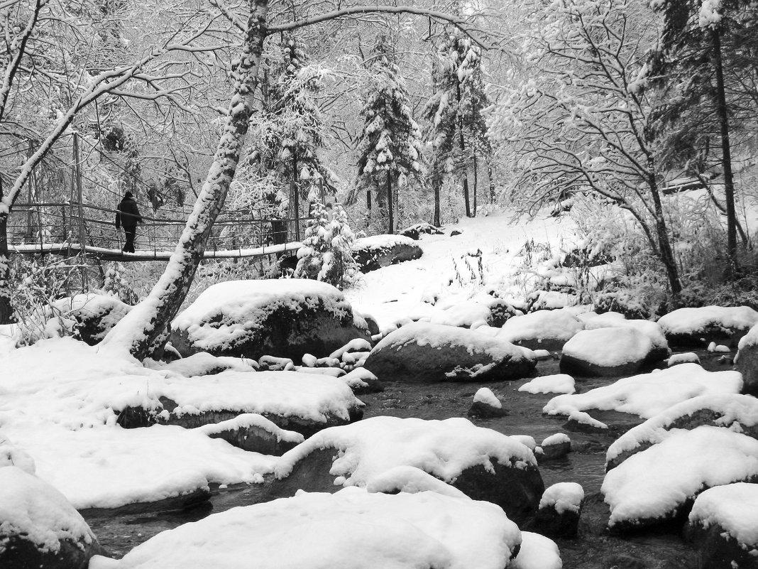 Алтай - после снегопада - Сергей Добрыднев