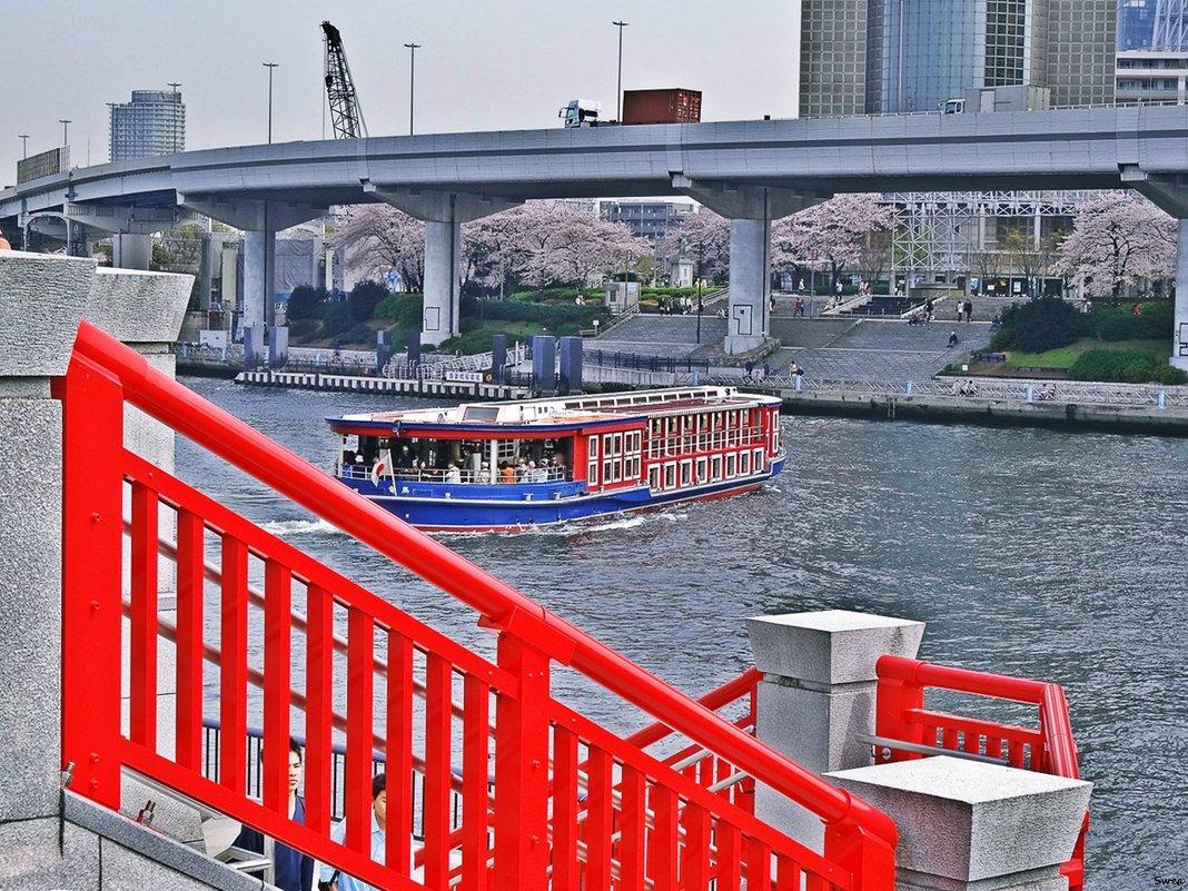Токио река Сумида - Swetlana V