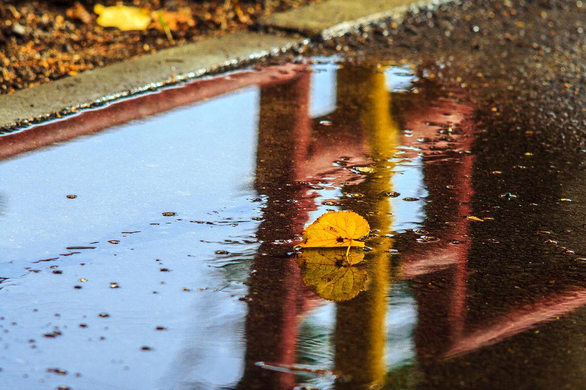 Одиночное плавание - Дмитрий Костоусов