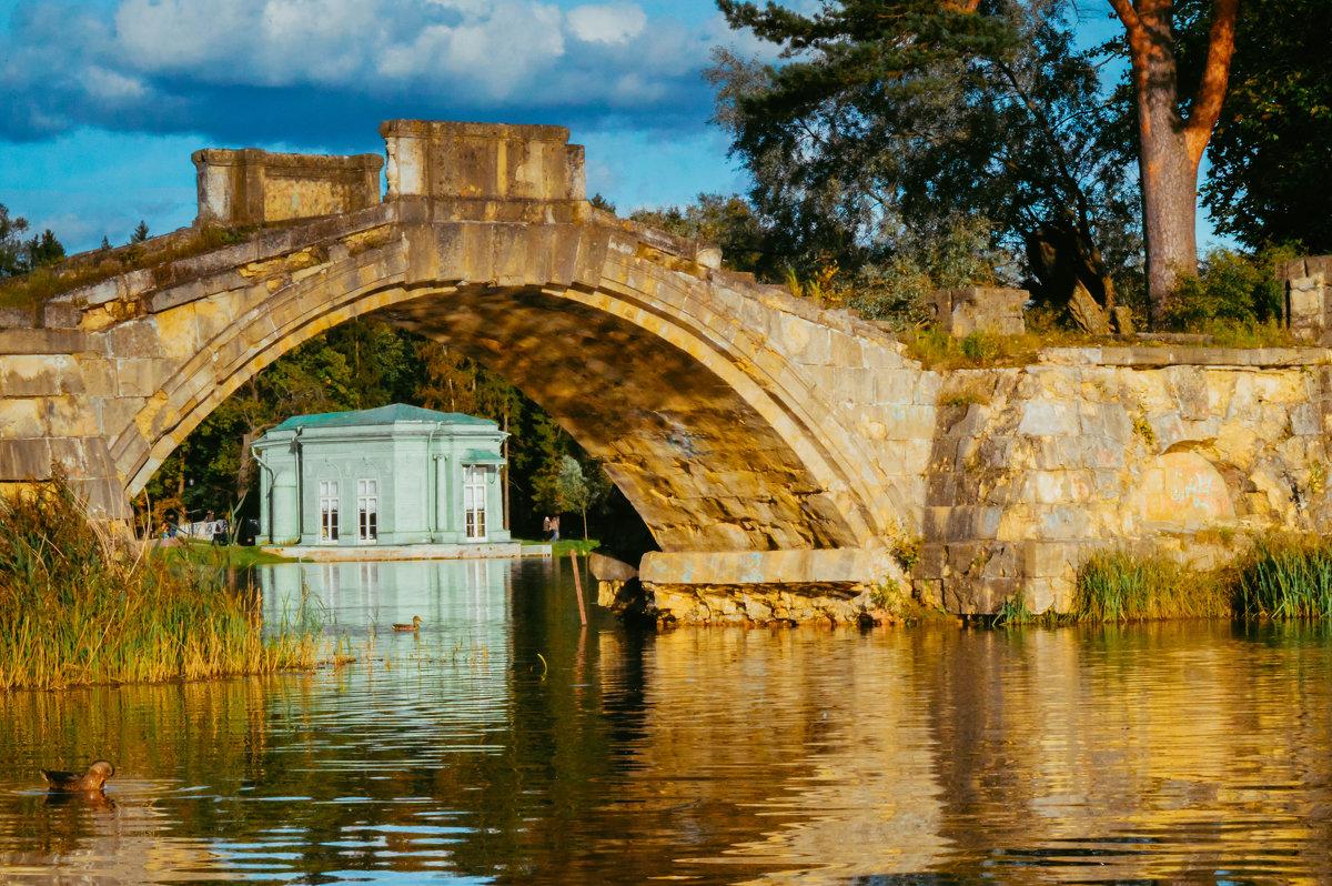 Горбатый мост 2 - Роман