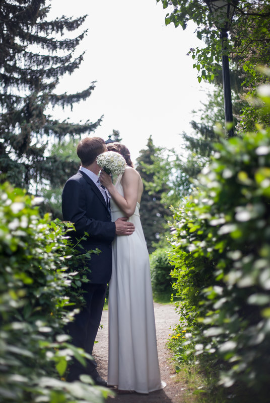 Свадьба - Евгений Даренский
