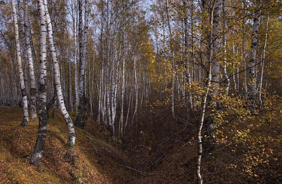 Прошлая осень - Владимир Макаров