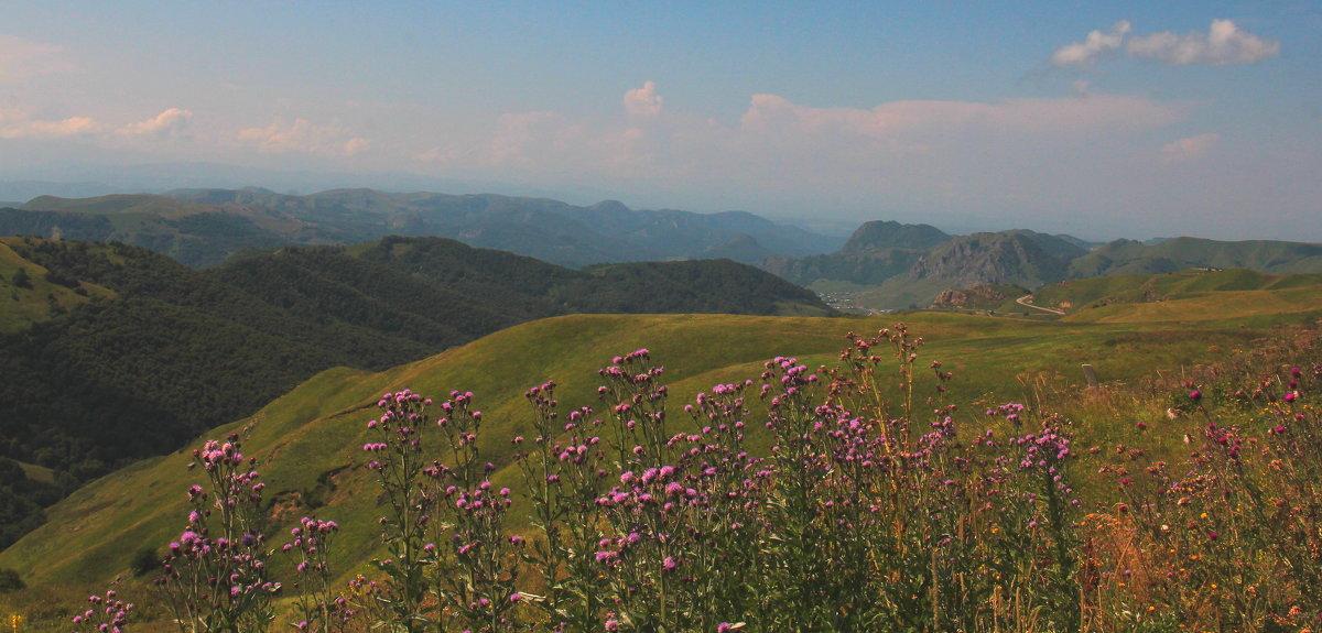 Последние дни лета на перевале Гум-Баши. Маринское ущелье. Высота более 2100 м. - Vladimir 070549