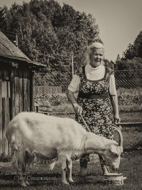 Бабушка - Олег Секержицкий