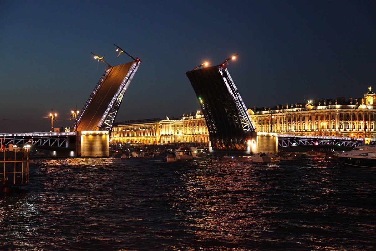 Дворцовый мост. Питер. Белые ночи - Наталья