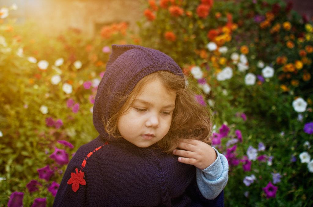 петуниевый сад - Тася Тыжфотографиня