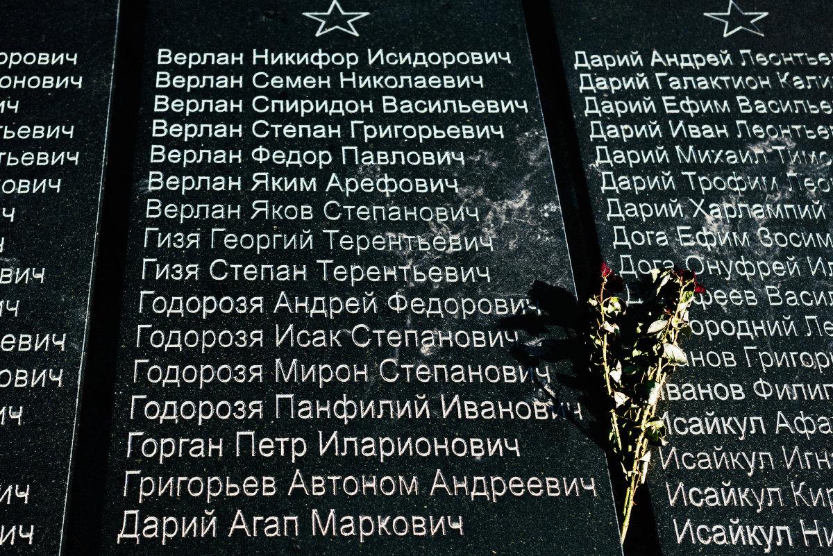 Мемориал - Veaceslav Godorozea