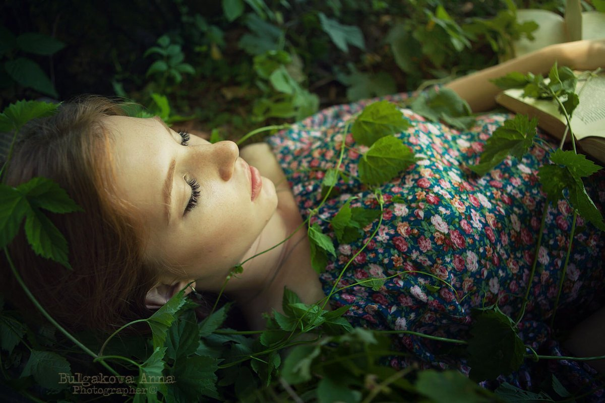 Из серии сны наяву - Анна Булгакова