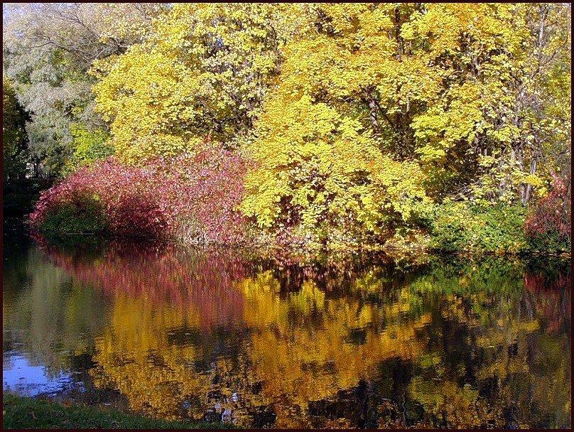 Осень - vadim