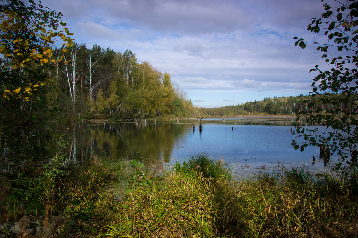 "Из серии ""Лесное озеро"" - Борис"