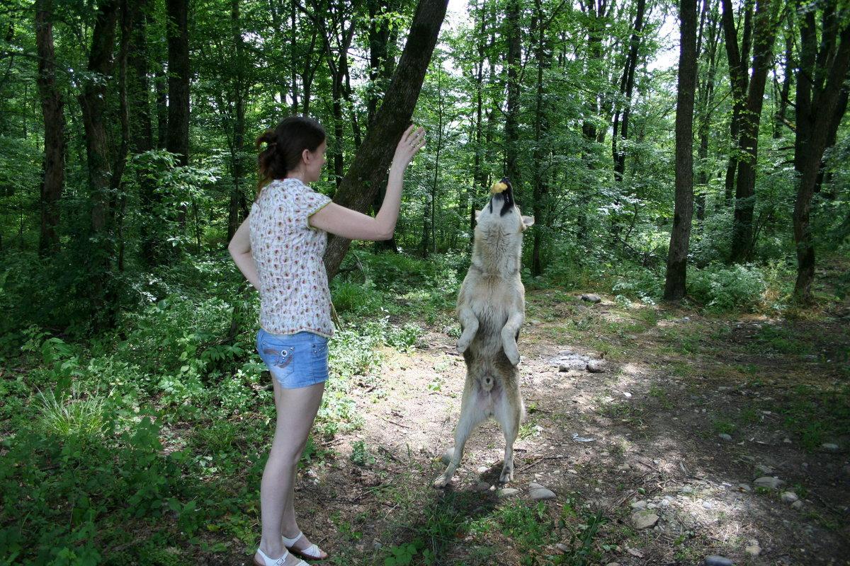 АДЫГЕЯ. ГУЗЕРИПЛЬ - Tata Wolf