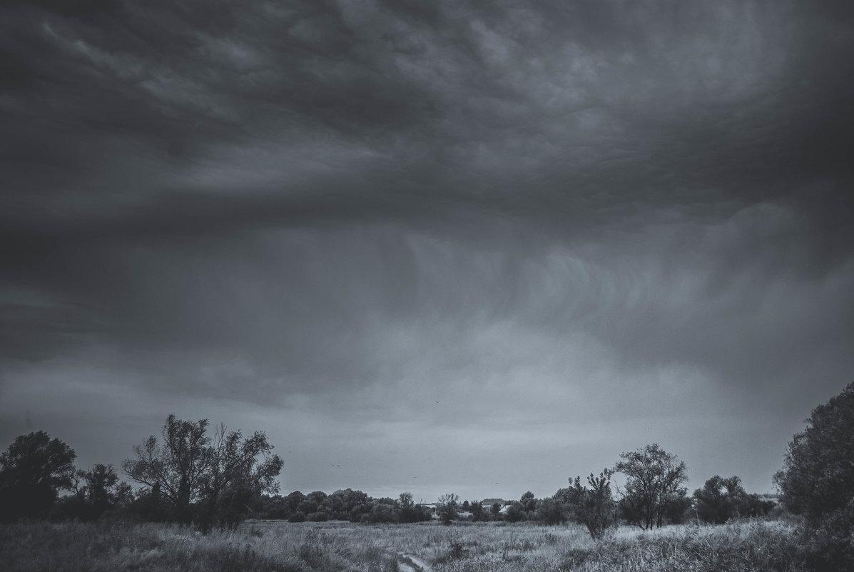 буря - Алина Гриб