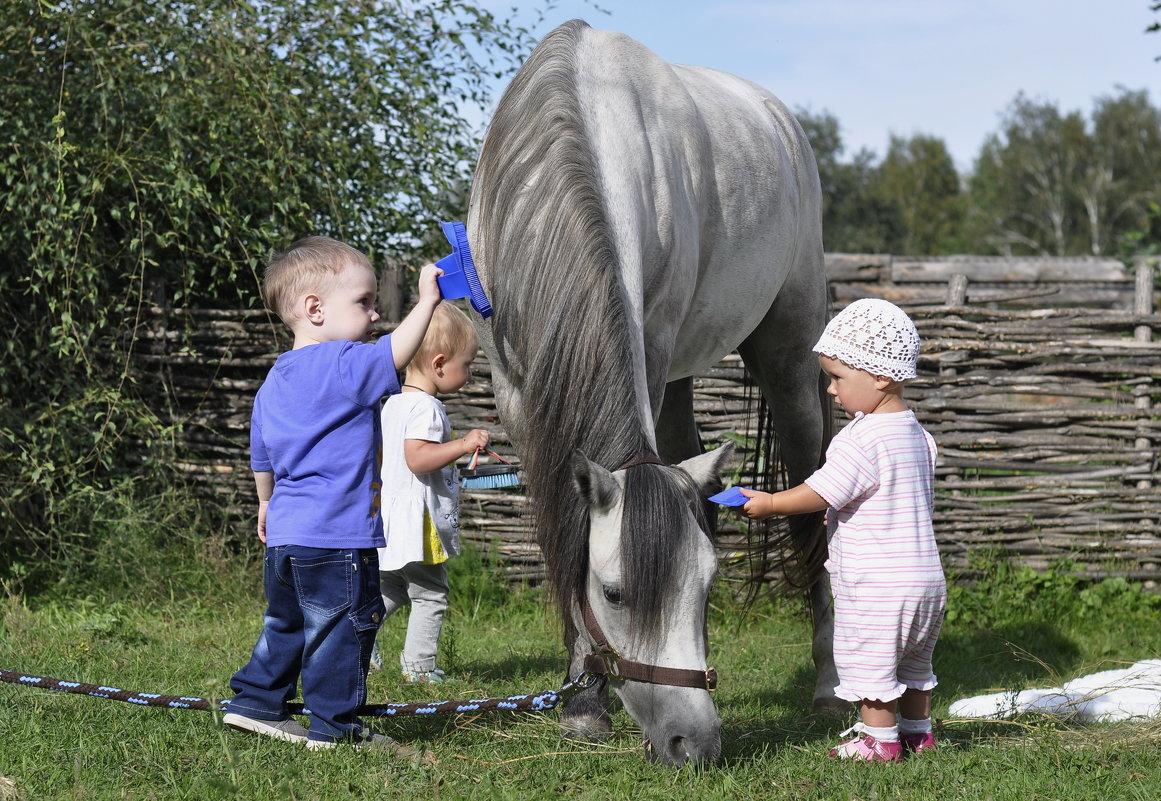 Детки с уэльским пони - Ольга Слободянюк