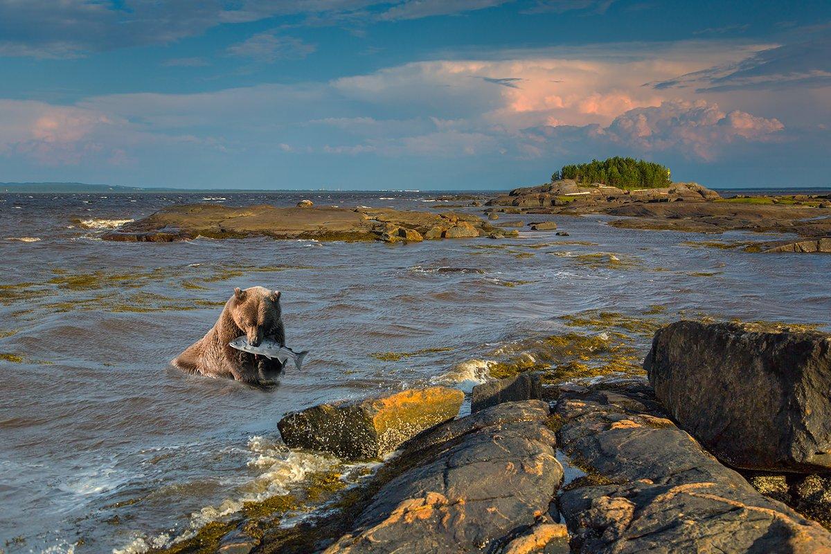 Белое море - Валентин Кузьмин