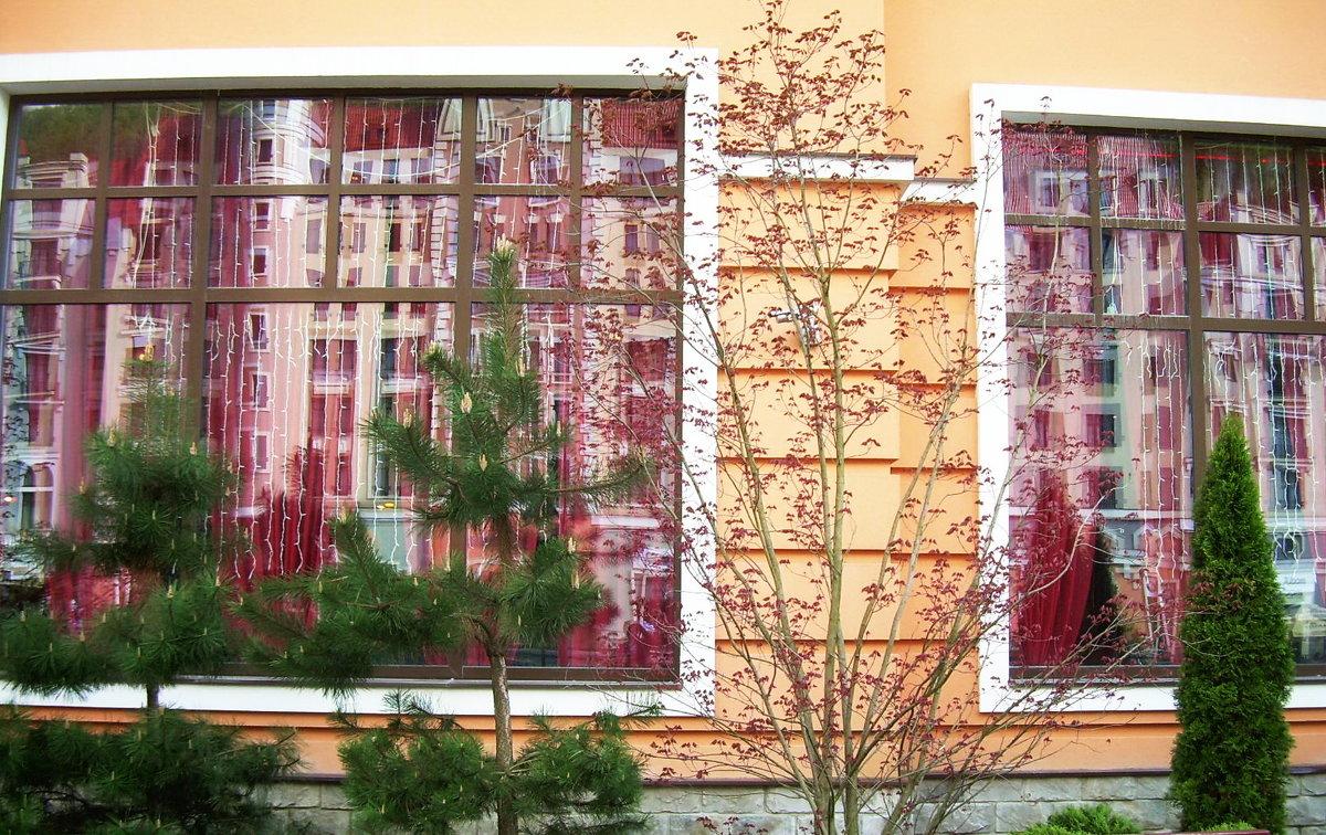 Отражение в окнах - татьяна