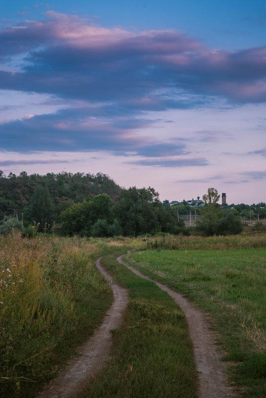 Летний вечер - Алина Гриб