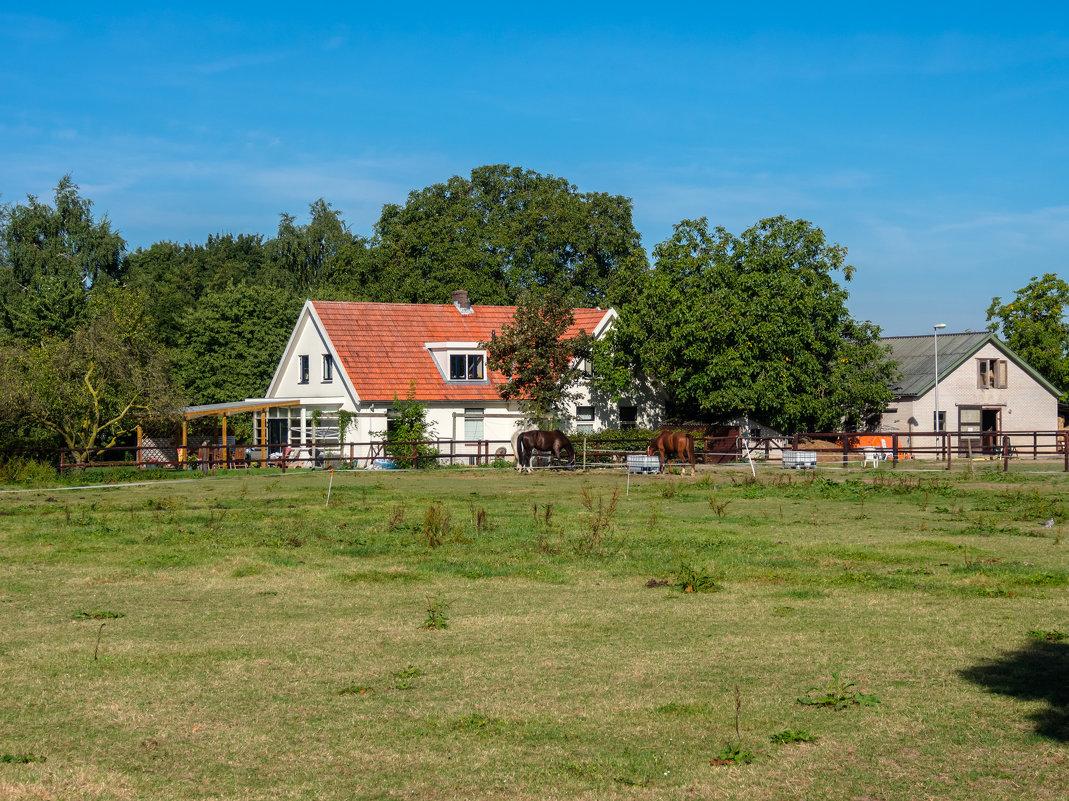 По дороге в Амстердам - Witalij Loewin