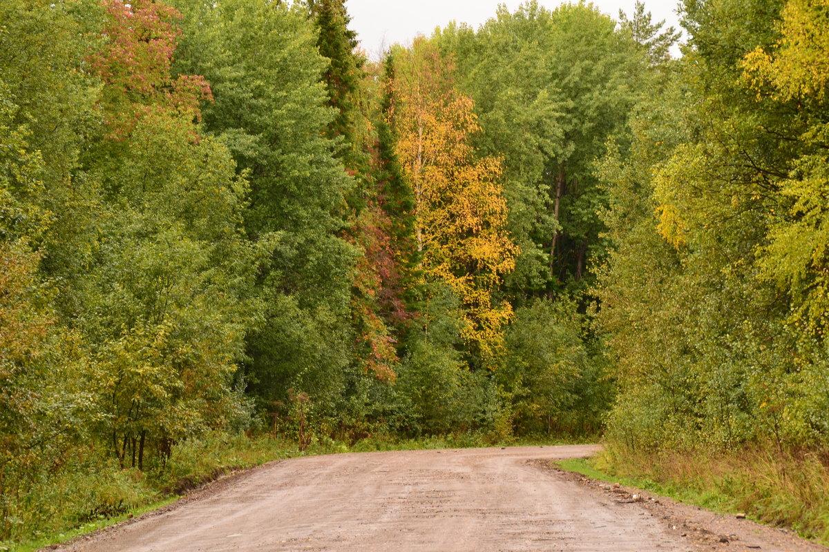 Вот и осень - petyxov петухов