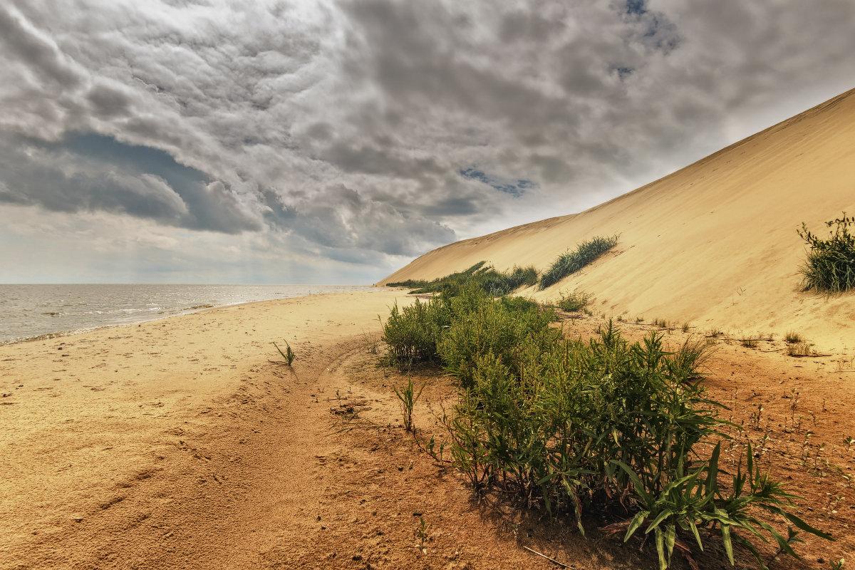 Под дюной - Владимир Самсонов
