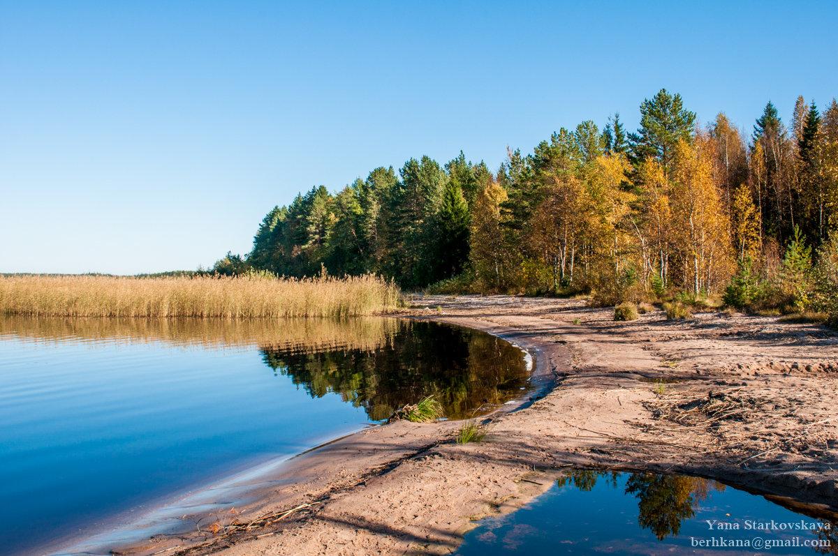 Осенний пляж - Яна Старковская