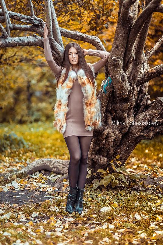 Осень - михаил шестаков