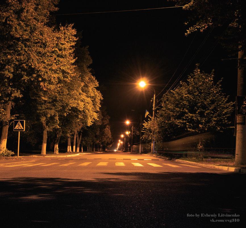 ночная дорога и фонари - Евгений