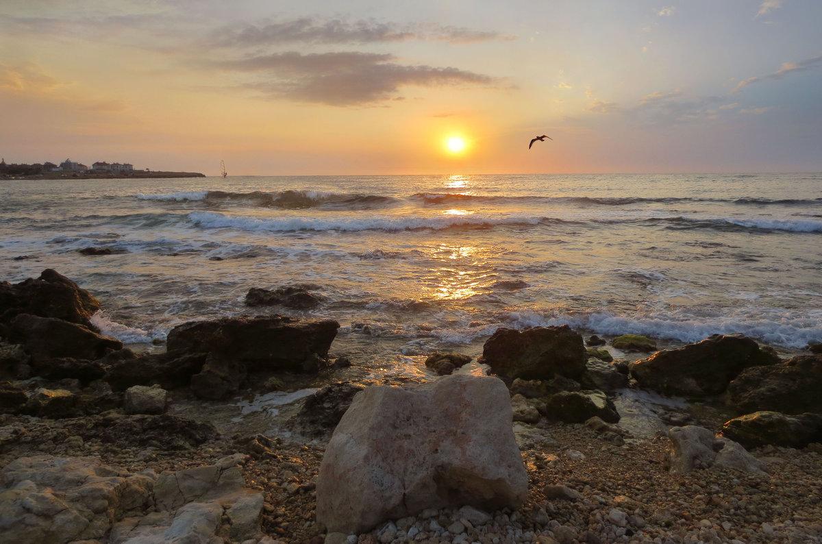 Вечерний свет над морем - Эля Юрасова