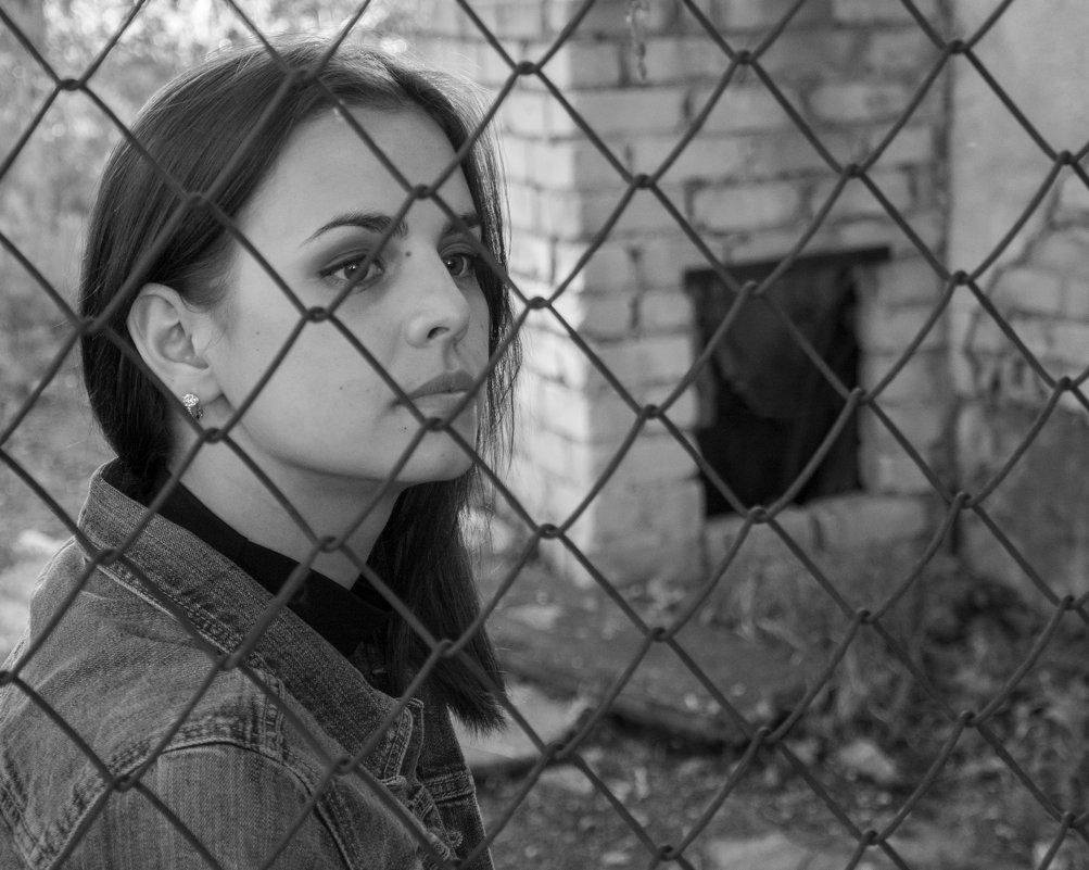 Прекрасная Даша за забором из сетки - Александр Швецов
