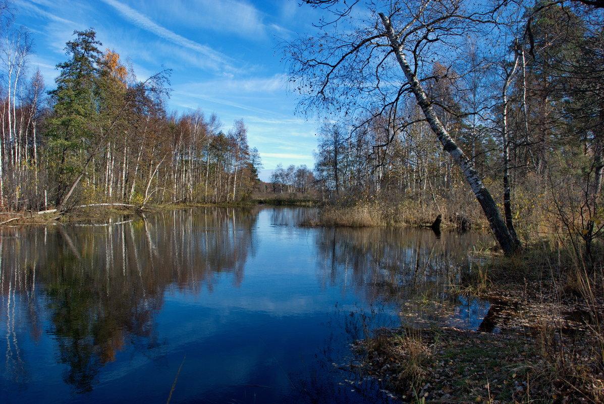 Осенний сюжет - Валерий Толмачев