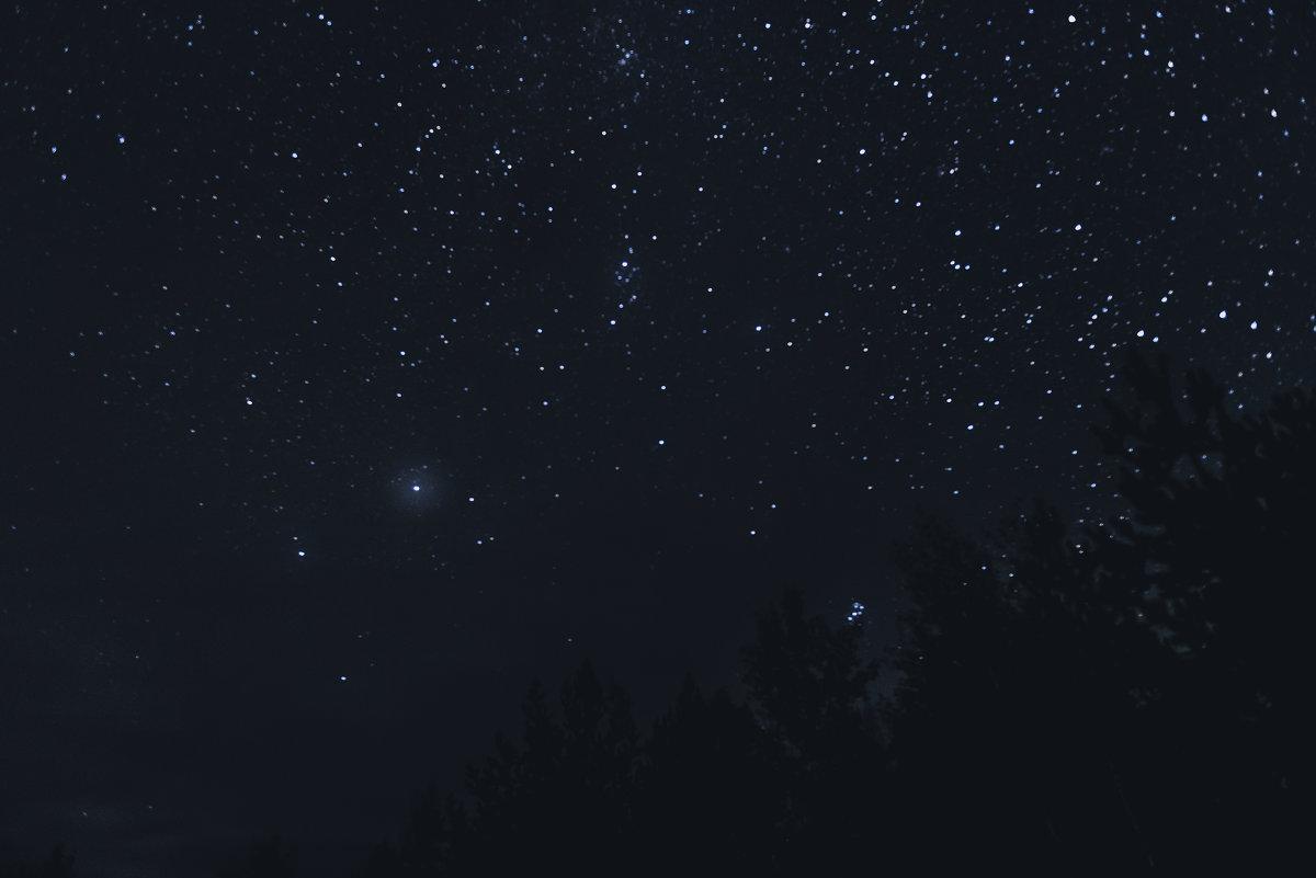 Ночное небо - Ольга Рощектаева