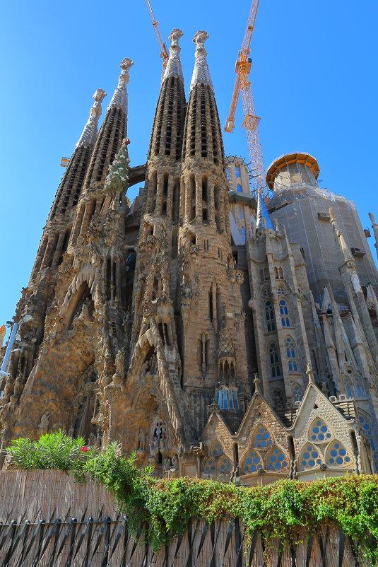 Саграда Фамилия – главный храм Барселоны - ALEX KHAZAN