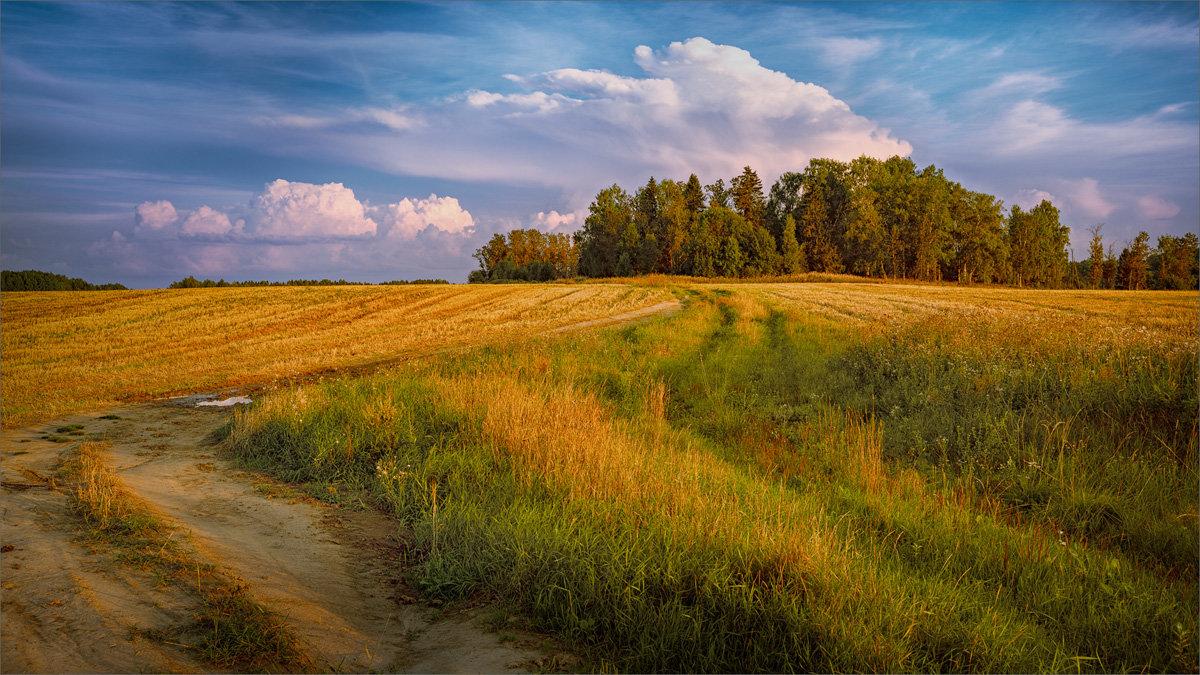 Простая деревенская красота... - Александр Никитинский