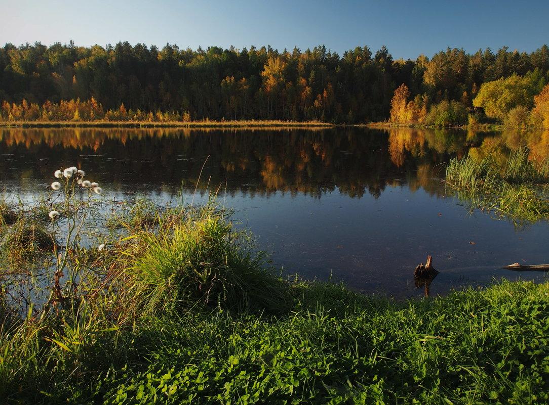 Вот и осень золотая... - Александр Попов