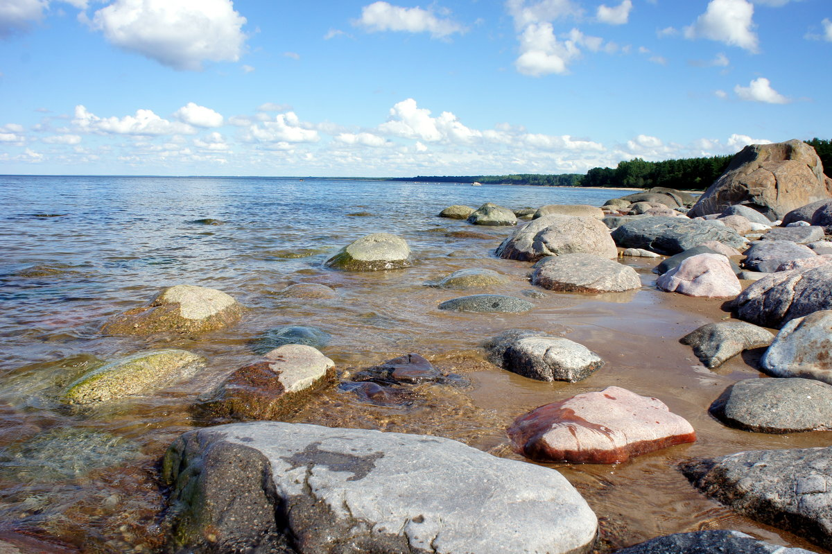 Финский залив - Елена Смолова