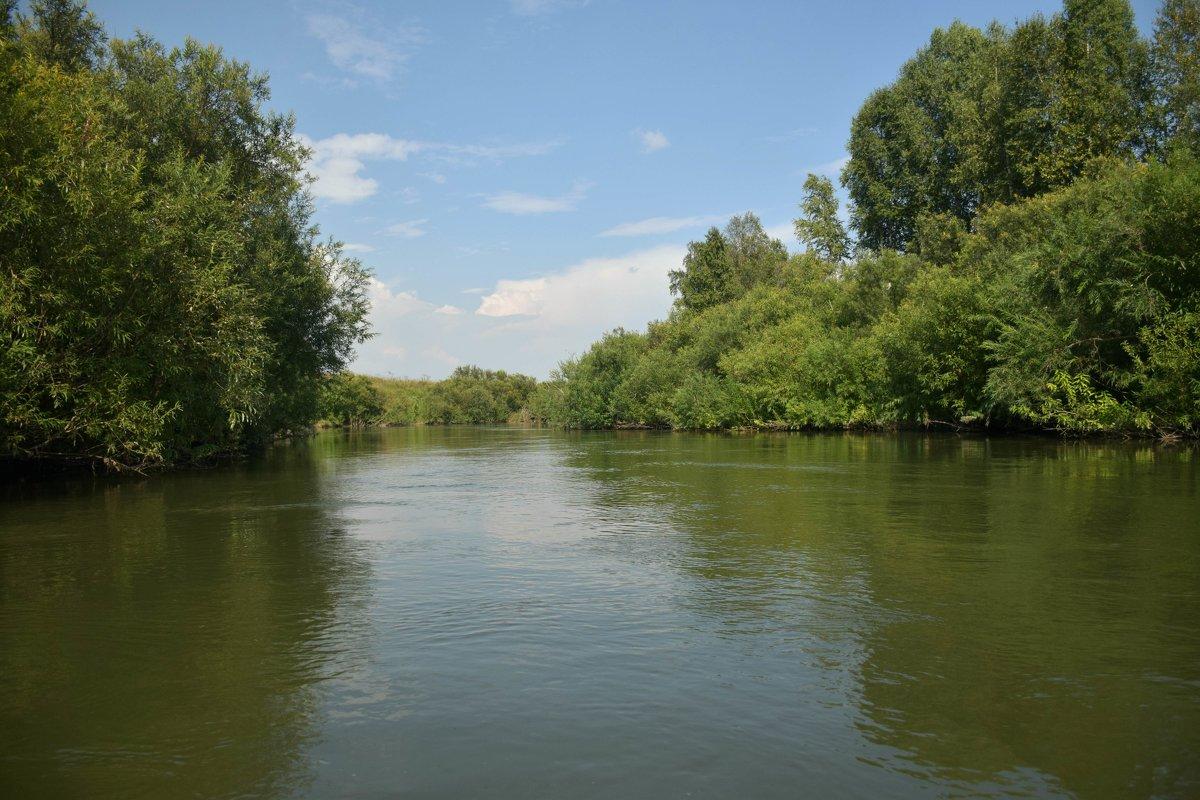 Река Чумыш - Юрий Борзов