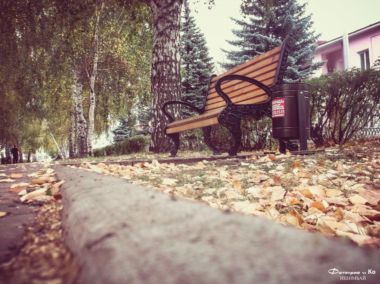 Скамейка на аллее - Вячеслав Баширов