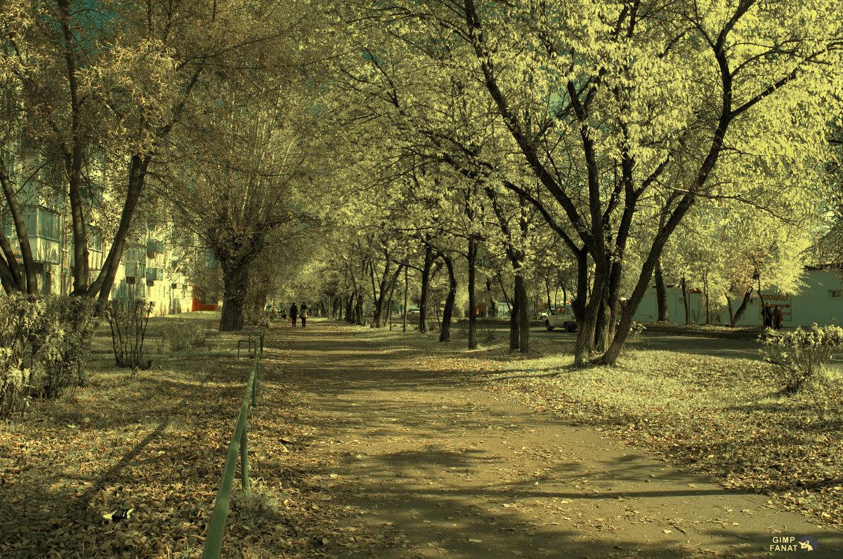 Осень золотая! - Сибирь Эвенкия Евгений Щербаков