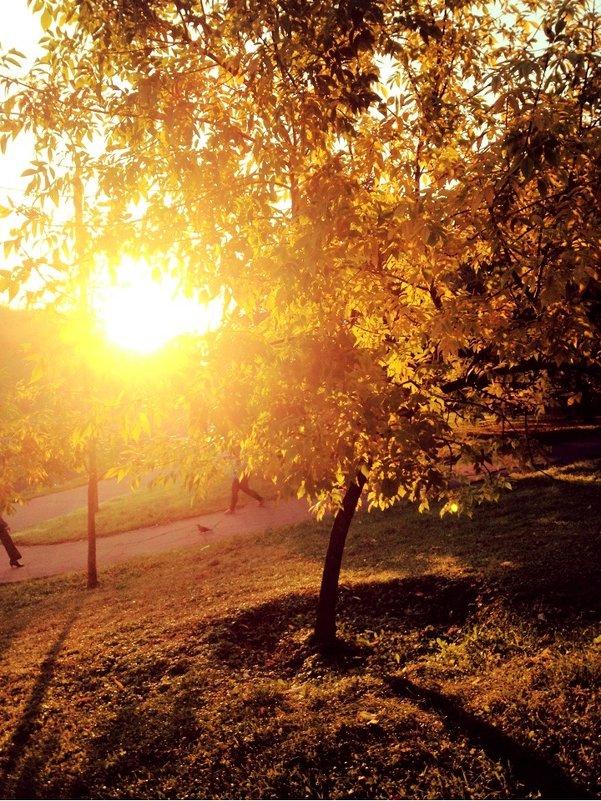 золотая осень - Таня