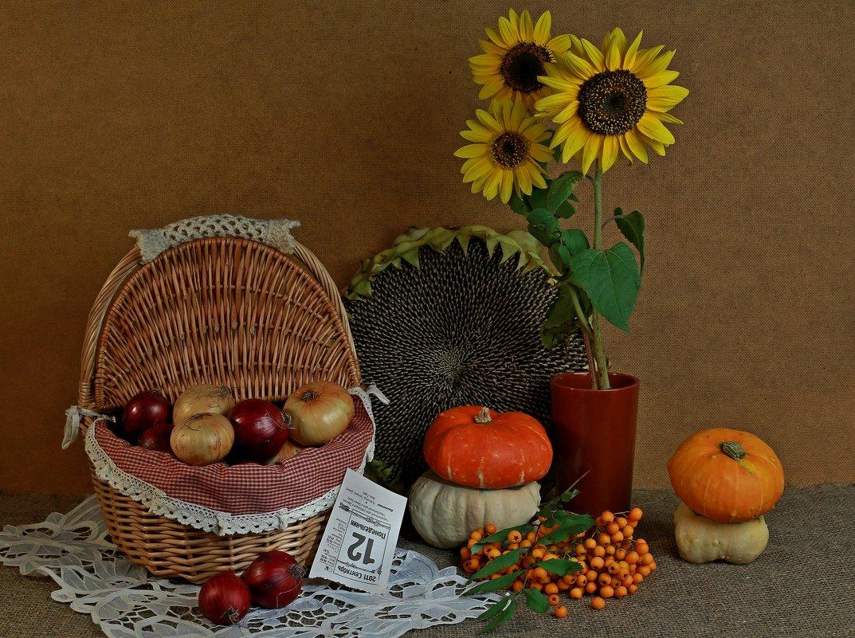 Осень пришла - Юрий
