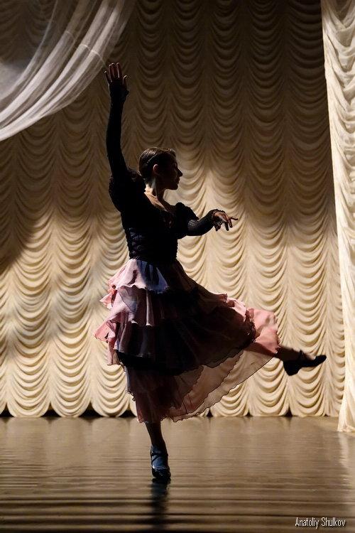 Балет, балет, балет - Анатолий Шулков