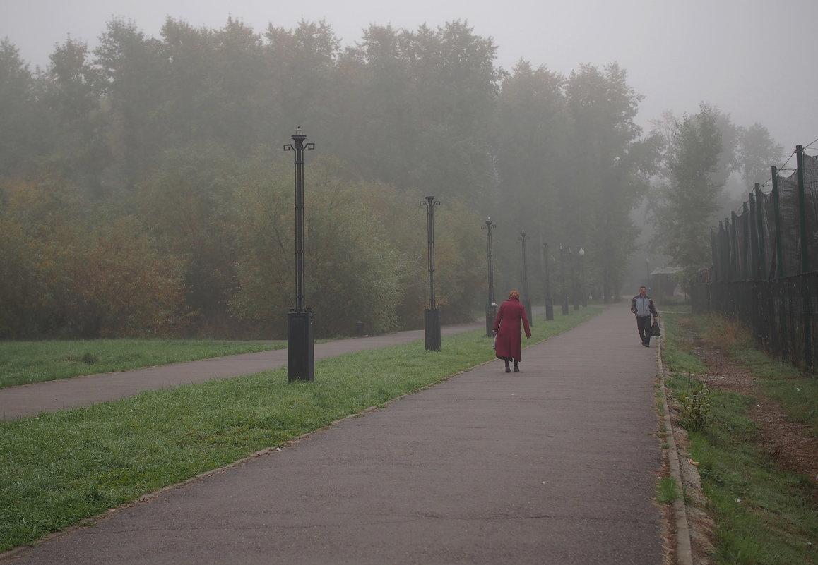 Утром в парке... - Александр Попов