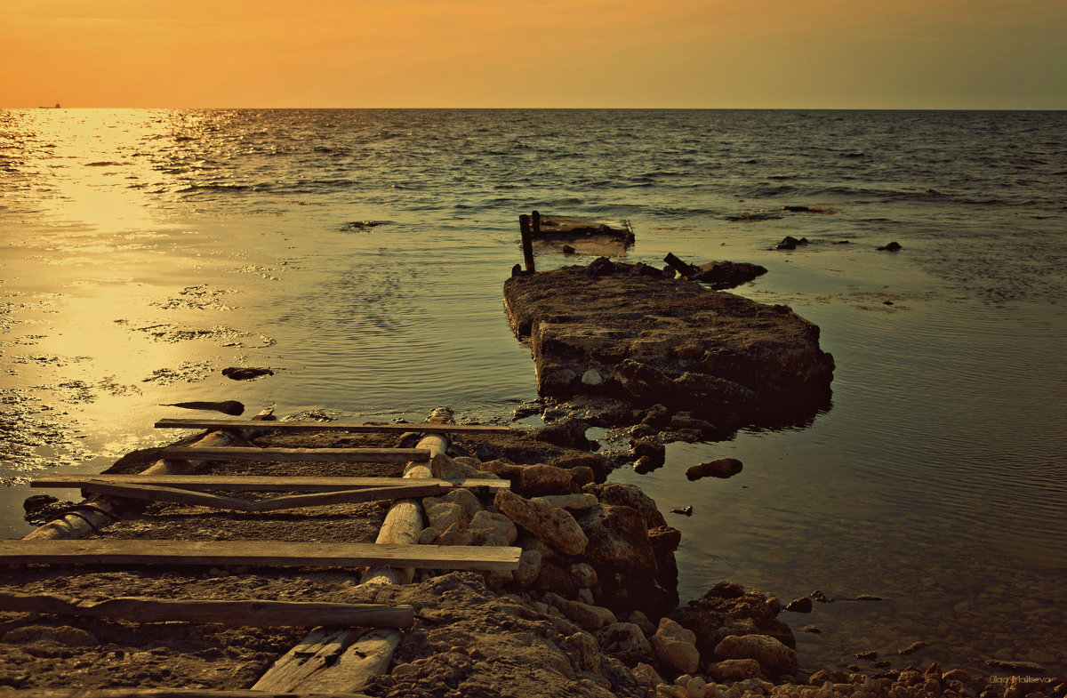 Морское наше побережье - Ольга Мальцева