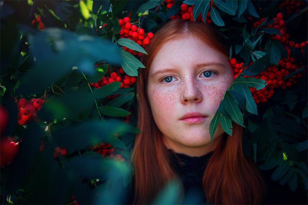 Рябина - Мария Ипполитова