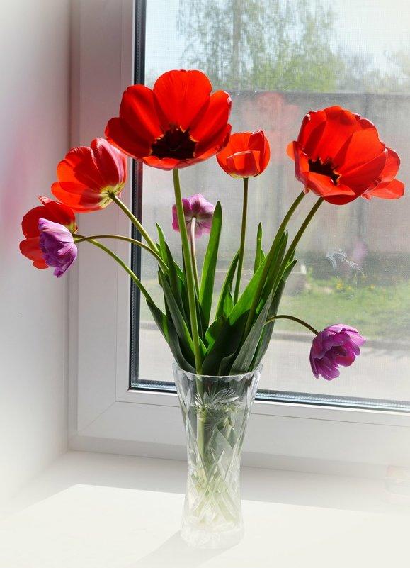 Воспоминание весны - Марина Романова