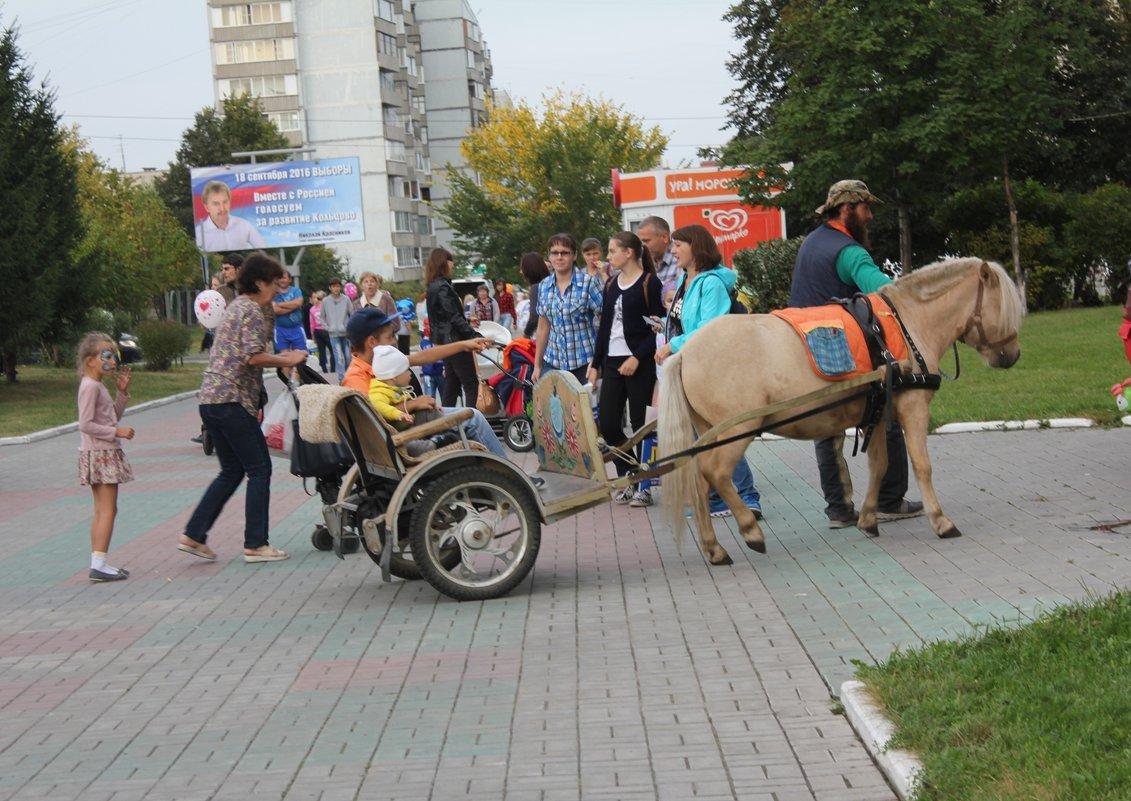 Пони - Наталья Золотых-Сибирская